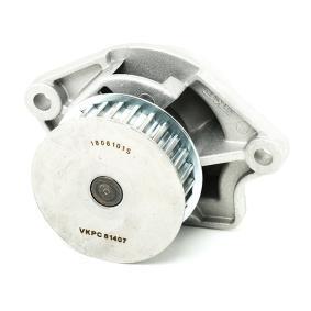 Pompe à eau courroies SKF VKMC 01121-1