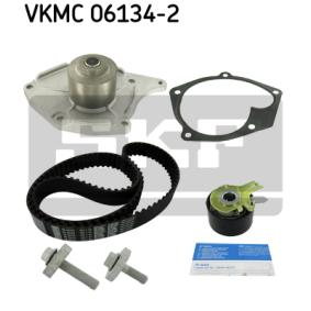 VKMC061342 Wasserpumpe + Zahnriemensatz SKF VKN1004 - Große Auswahl - stark reduziert