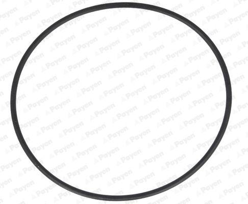 LA5257 PAYEN O-Ring, cylinder sleeve: buy inexpensively
