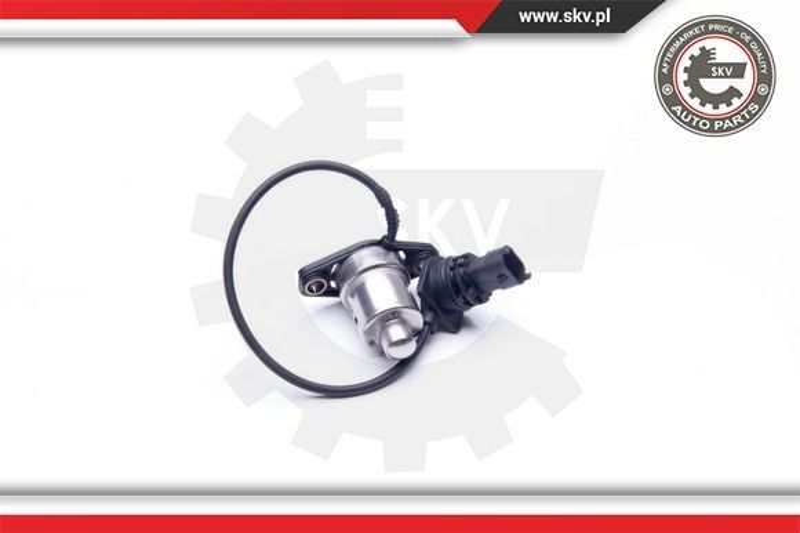 17SKV405 Sensor, Motorölstand ESEN SKV - Markenprodukte billig