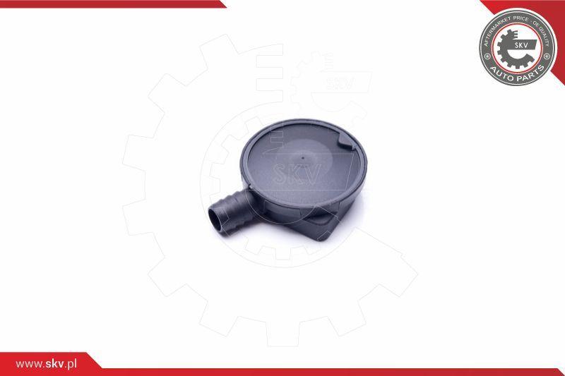31SKV064 Ventil, Kurbelgehäuseentlüftung ESEN SKV Test