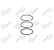 VADEN Kolbenringsatz, Kompressor für IVECO - Artikelnummer: 751 200