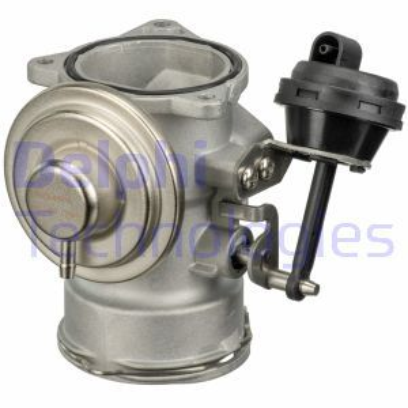 OE Original AGR Ventil EG10409-12B1 DELPHI