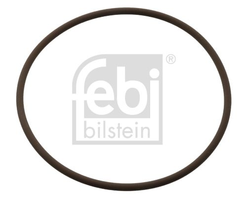 FEBI BILSTEIN: Original Dichtring, Kühlmittelrohrleitung 104848 ()
