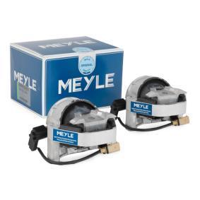 Comprare 4G0199381KL MEYLE bilaterale, Cuscinetto idraulico ad inserimento elettrico Sospensione, Motore 100 199 3103/S poco costoso