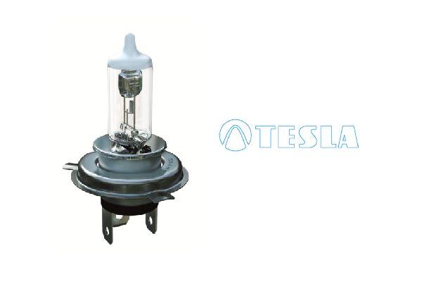 OE Original Fernscheinwerfer Glühlampe B50401 TESLA