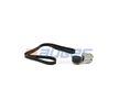 84579 AUGER Keilrippenriemensatz für MAN online bestellen