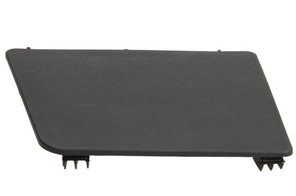 LKW Trittbrett PACOL RVI-SP-024R kaufen