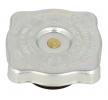 10011.T LEMA Verschlussdeckel, Kühler für RENAULT TRUCKS online bestellen