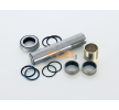230.086 CEI Repair Kit, kingpin - buy online