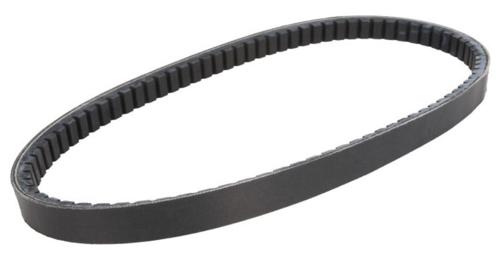 Drive V-Belt, variomatic CT016 at a discount — buy now!