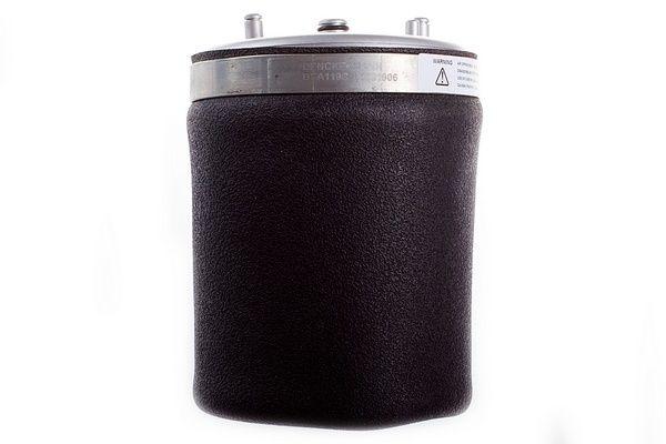 Original JAGUAR Luftfederbein DSA110G