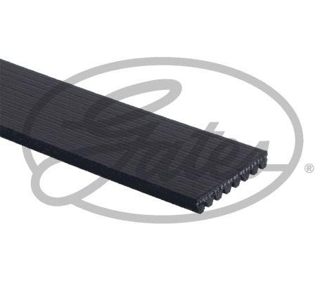 8PK1385HD Keilrippenriemen & Keilrippenriemensatz GATES - Markenprodukte billig