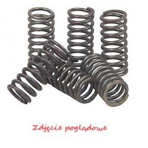 Clutch Spring Set CSK123 at a discount — buy now!