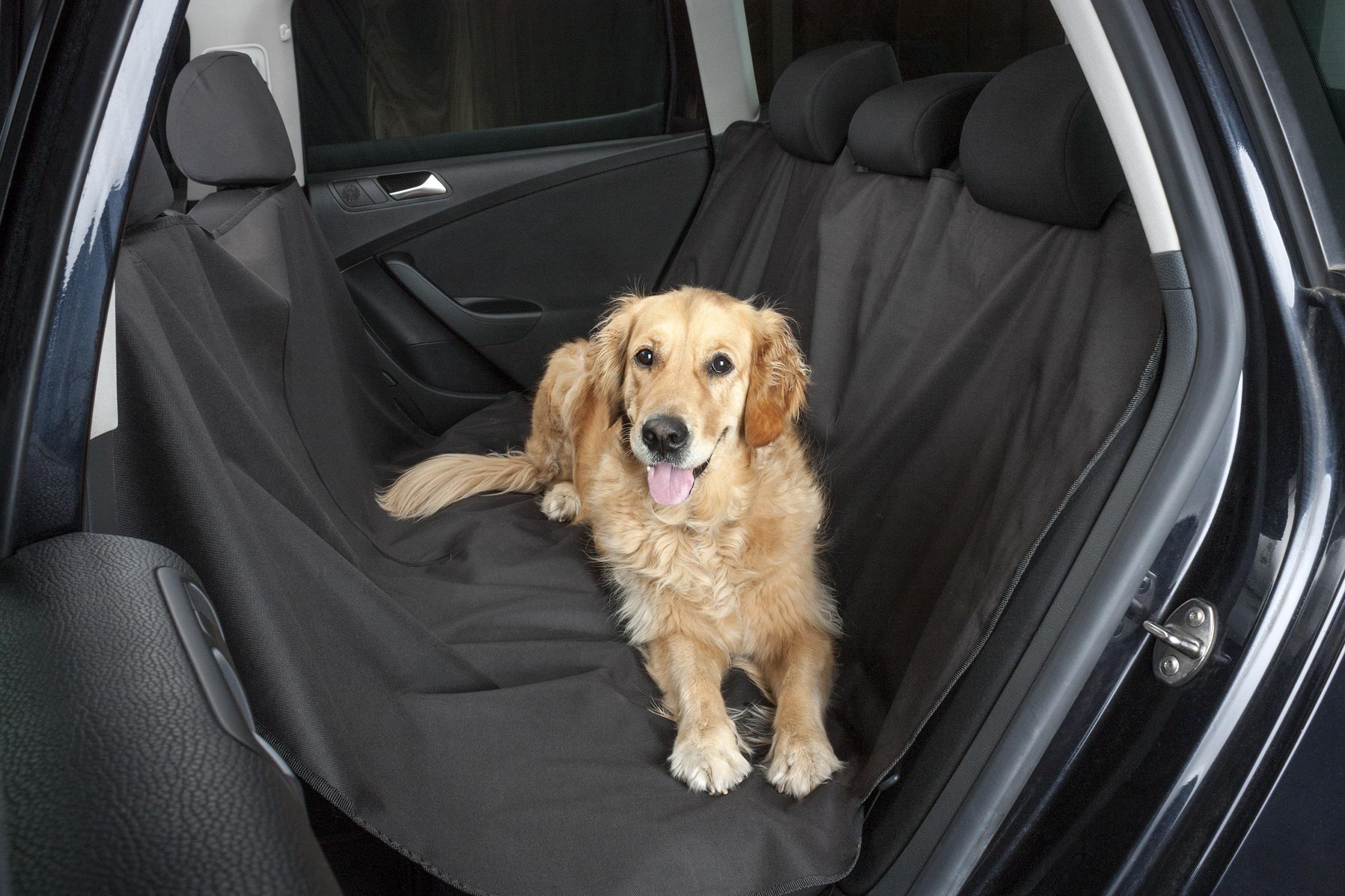 Kaufen Sie Autositzbezüge für Haustiere 13611 zum Tiefstpreis!