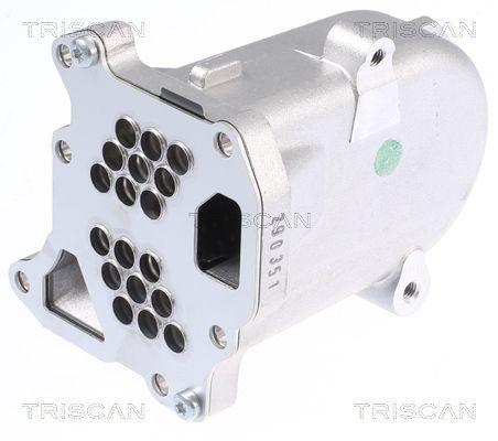 8813 10104 TRISCAN mit Dichtungen AGR Kühler 8813 10104 günstig kaufen