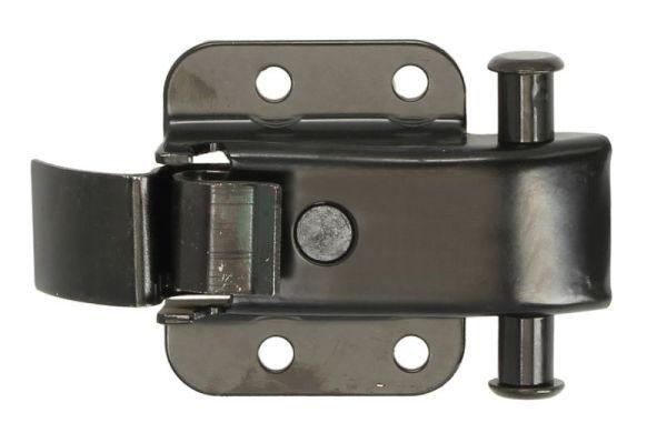 Portiere / componenti 6010-01-047431T BLIC — Solo ricambi nuovi