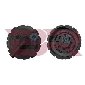 BRAC9567 BOTTO RICAMBI Verschlussdeckel, Kühlmittelbehälter BRAC9567 günstig kaufen