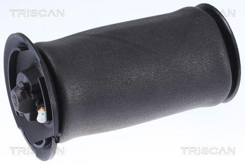 TRISCAN Luftfeder, Fahrwerk 8720 11202