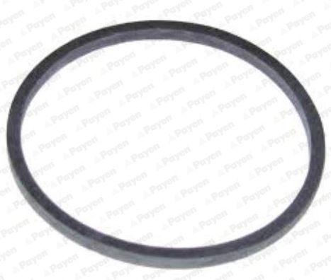 Oil cooler seal KK5738 PAYEN — only new parts