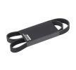 305P0428 RIDEX Keilrippenriemen billiger online kaufen