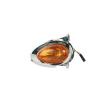 Motorrad Lichtscheibe, Blinkleuchte 8230 Niedrige Preise - Jetzt kaufen!
