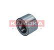 5600169 KAMOKA Radlagersatz für RENAULT TRUCKS online bestellen