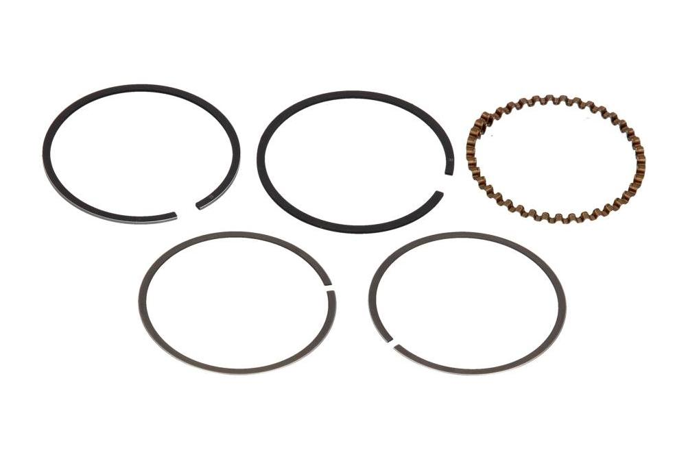 Piston Ring Kit 10 010 0450 at a discount — buy now!