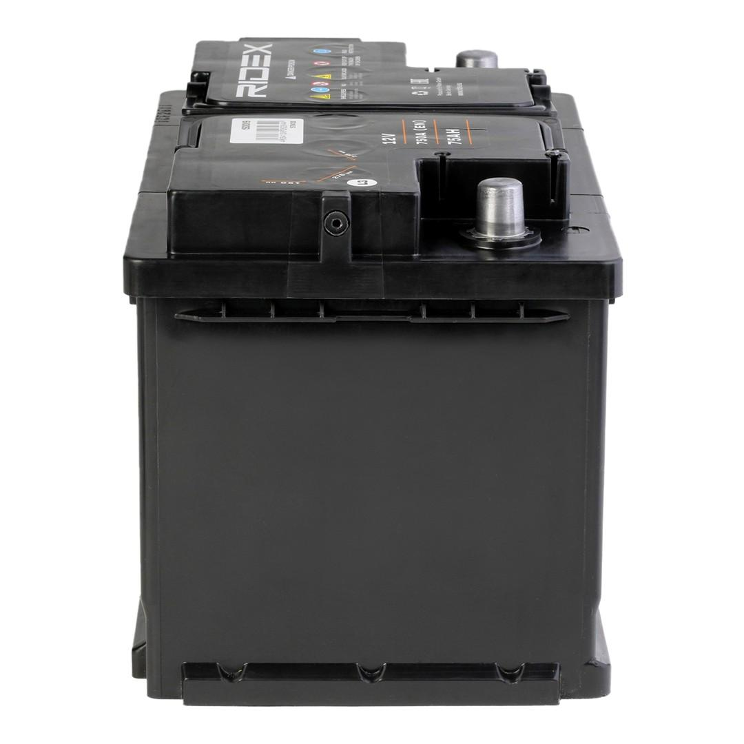 1S0009 Batterie RIDEX - Markenprodukte billig