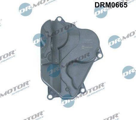 Kurbelwellenentlüftung DR.MOTOR AUTOMOTIVE DRM0665