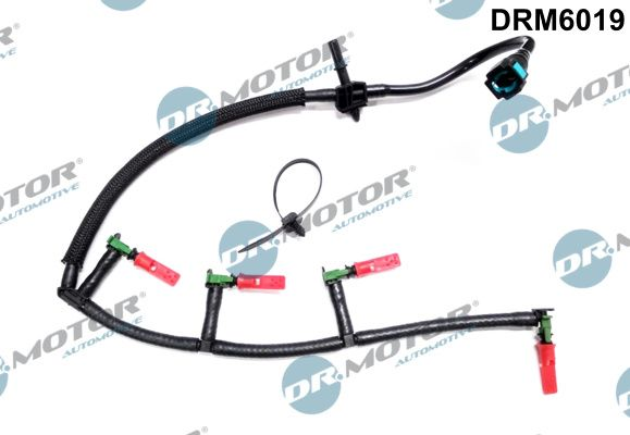 DR.MOTOR AUTOMOTIVE: Original Kraftstoffverteiler DRM6019 ()