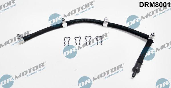 DR.MOTOR AUTOMOTIVE: Original Kraftstoffverteiler DRM8001 ()