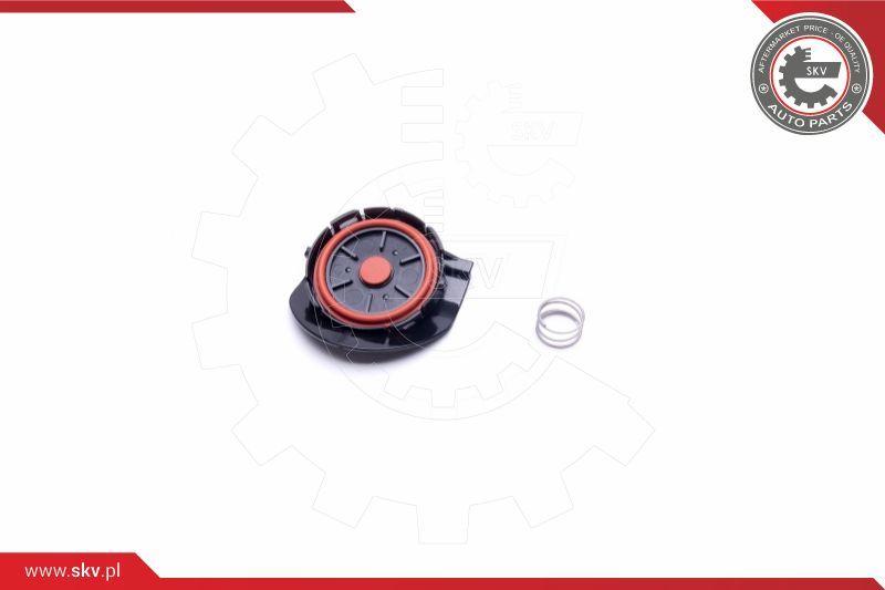 ESEN SKV: Original Ölabscheider Kurbelgehäuseentlüftung 31SKV141 ()