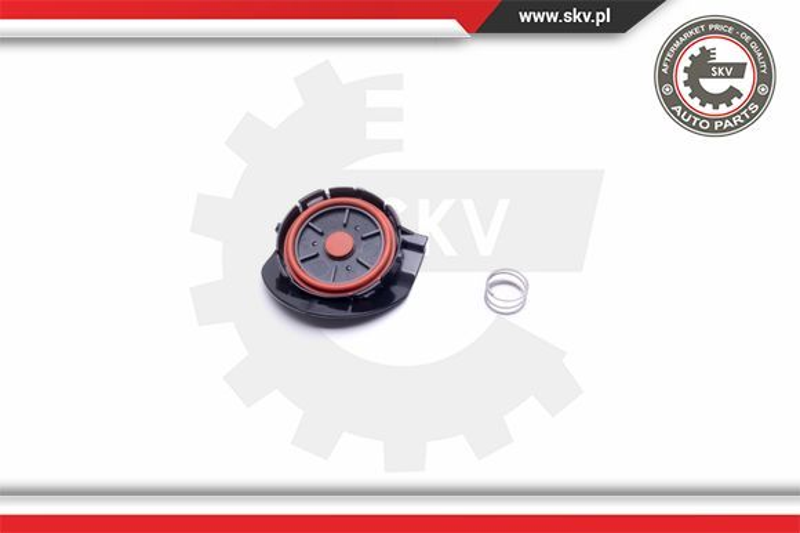 ESEN SKV: Original Ventil Kurbelgehäuseentlüftung 31SKV141 ()