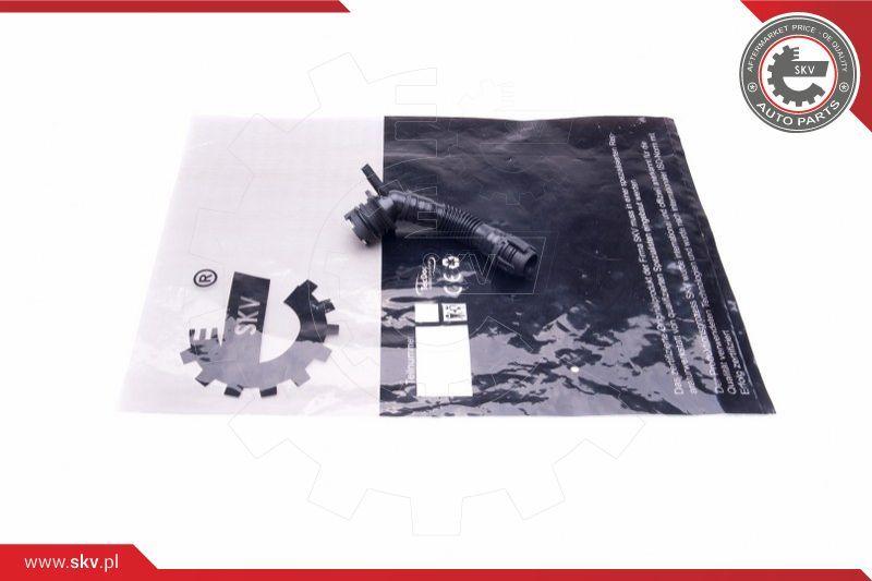 Ventil Kurbelgehäuseentlüftung ESEN SKV 43SKV329