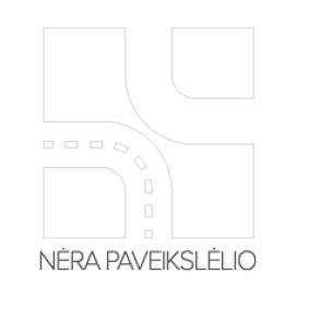 64193 Lemputė, prožektorius OSRAM Test