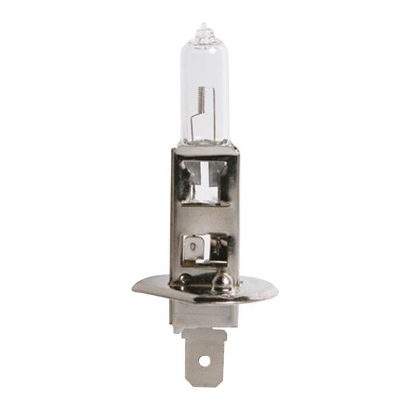 0725010 CARPOINT Glühlampe, Fernscheinwerfer für MITSUBISHI online bestellen
