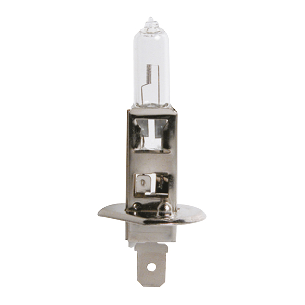 0725010 CARPOINT Glühlampe, Fernscheinwerfer für MAN online bestellen