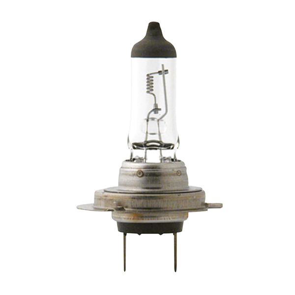 0725022 CARPOINT Glühlampe, Fernscheinwerfer für MERCEDES-BENZ online bestellen