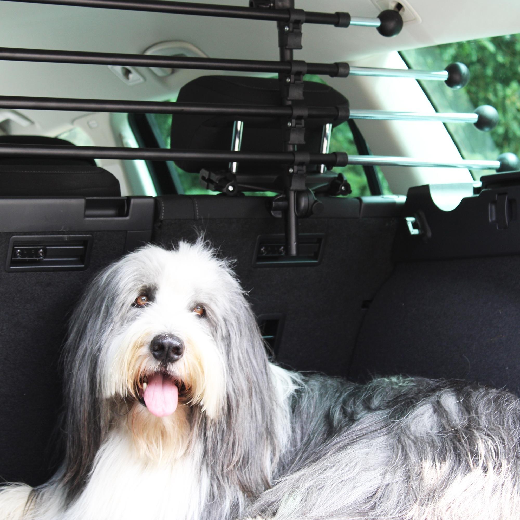 Hundegitter fürs Auto 127503 Niedrige Preise - Jetzt kaufen!