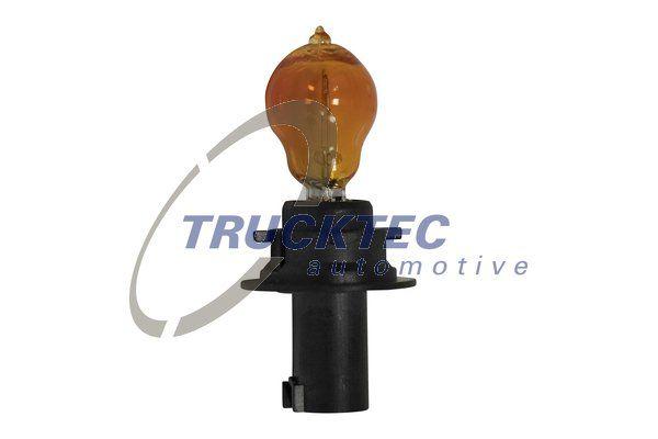 OE Original Blinker Lampe 02.58.447 TRUCKTEC AUTOMOTIVE