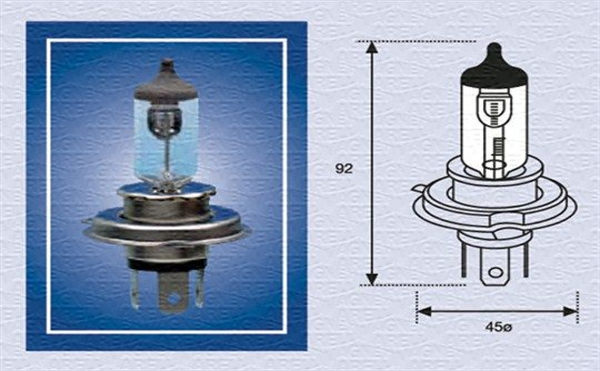 002156100000 MAGNETI MARELLI Glühlampe, Fernscheinwerfer für MAN online bestellen