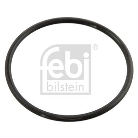 buy and replace Gasket, thermostat FEBI BILSTEIN 10258