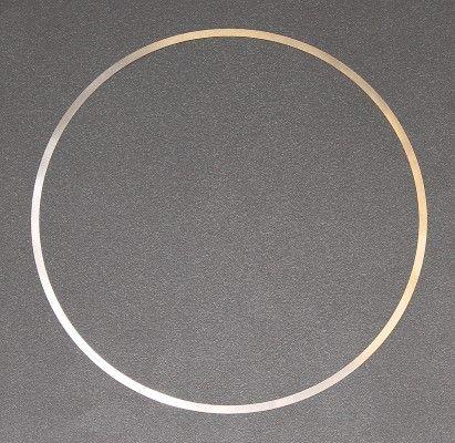 ELRING O-Ring, cylinder sleeve for ERF - item number: 703.079