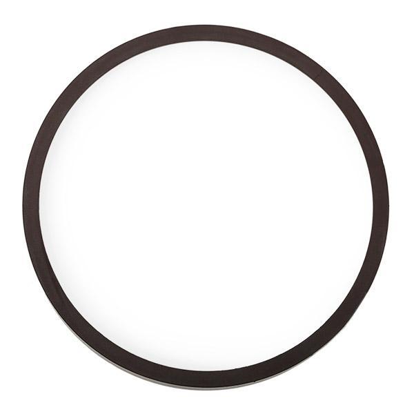 MAPCO: Original ABS Ring 76851 ()