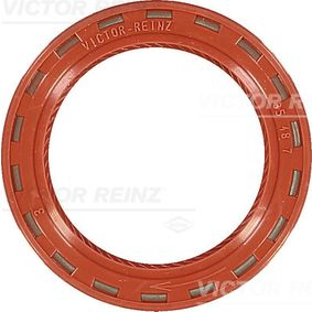 81-24909-10 Shaft Seal, camshaft REINZ - Experience and discount prices