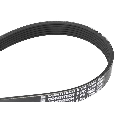 Buy original Belts, chains, rollers CONTITECH 6PK1200