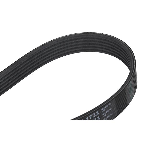 Volkswagen TIGUAN 2012 Belts, chains, rollers CONTITECH 6PK1733: