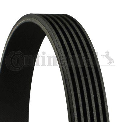 Köp CONTITECH 6PK858 - Serpentinrem till Skoda: Ribbantal: 6, L: 858mm