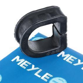 MSX0033 MEYLE MEYLE-ORIGINAL Quality Lagerung, Lenkgetriebe 100 419 0001 günstig kaufen